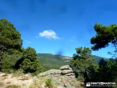 Jarosa - Agua y Bosque Plateado; foro senderismo madrid;vacaciones septiembre;senderistas madrid